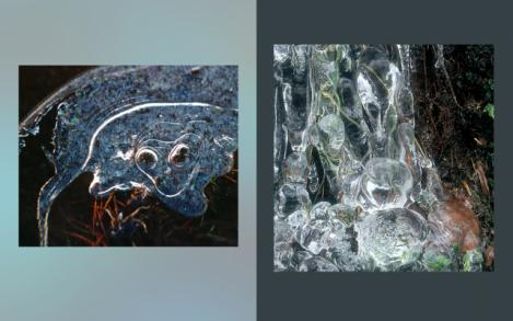 Ice Elements 15 and 16
