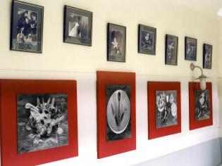Art in Home and Work Space